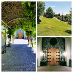 Terra Blanca Winery Wedding